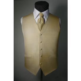 Tuxedo Vest and Tie Sets