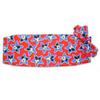 Mickey Mouse Star Cummerbund and Bow Tie Set