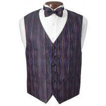 Multicolor Vest and Bow Tie Set